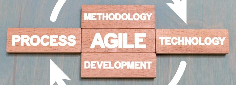 What to look out for when contracting agile software development?